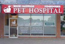 Upper Oakville Pet Hospital / Dr. Bryan Lee and Upper Oakville Pet Hospital is now open at Upper Oakville Shopping Centre.