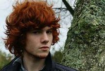 ♂ Male • Redhead