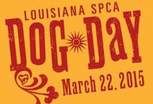 Animal-Themed Days and Events / Animal-driven events hosted by the Louisiana SPCA, as well as, fun animal-themed holidays.