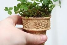 DIY - Lawn & Garden / Do-it-Yourself projects for the lawn and garden spaces.