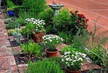 Herb Garden Ideas / by Advice From The Herb Lady