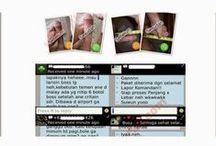 Obat Pembesar Penis Alami Vimax Canada 081222264774 / Apa Itu Vimax....????  Vimax merupakan Obat pembesar penis import yang sanggup menjadikan alat vital kamu besar, panjang, keras serta permanen, Vimax merupakan produk herbal alamiah yang sangat manjur serta berhasiat untuk menanggulangi persoalan pria dewasa SUDAH TERBUKTI DI EROPA.Vimax kapsul original canada bisa meningkatkan panjang serta besar pada lingkar penis, meningkatkan gairah seksual, kesehatan seksual serta menolong untuk mencapai ereksi kuat kencang, tahan lama.