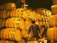 Bodegas / Fotos que inspiran de las mejores bodegas de vinos del mundo