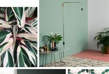 Colorboost - Roomed.nl / Color inspiration for your interior!