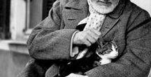Henri Matisse / French artist Henri Matisse (1869 - 1954) I Fauvism, Impressionism, Modern Art