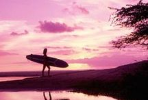Life's a Beach / Get a breath of fresh sea air with beautiful images of all things sand and surf