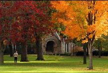 Midwest Colleges / Colleges + Universities in the Midwest | OH, IL, IN,  MI, MN, MO, WI