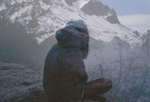 Alegria / Travel, mountain, adventure, my life. / by Pierre Want
