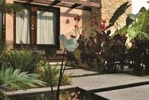 EXTERIORS / exteriors // gardening // landscaping // patio // outdoors // plants // style // trend // design // lifestyle
