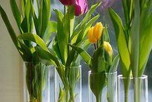 Flower creatie