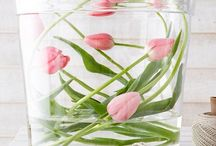 Lifestyle: Decoration Spring & Easter
