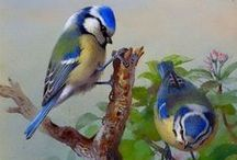 Птички / птицы