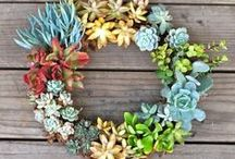 DIY Ideas / Maybe I'll make these someday...Find DIY crafts for your home, garden, kids, gifts, and more!