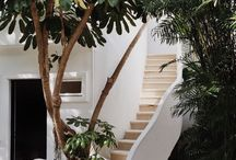 exteriors + outdoor living