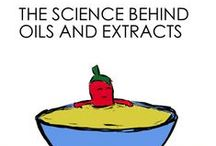 In The Kitchen / The science of food and cooking