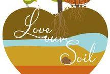 International Year of Soils 2015