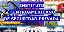 Seguridad Privada / Seguimiento a los avances en materia de Seguridad Privada