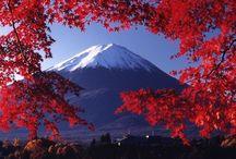 Japon / Préparation de mon voyage pour le Japon. Quelques lieux que j'aimerai voir.