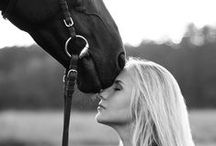 Photography with Horses / Horses, cowboys and cowgirls, english and  western style, equestrian