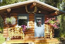 My Cozy Cabin Page / by Donna Mozdean-Rideout