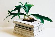 PIET ♥ BOTANISCH WONEN / Botanisch wonen is één van de interieurtrends van 2015. Planten in huis zijn helemaal hip en brengen leven in huis. Met gewoon een plantje in de vensterbank ben je er nog niet; het mag allemaal wat gekker, hang ze aan de muur,  aan het plafond of doe ze in aparte potjes. Zo breng je de natuur direct in je woonkamer.