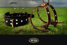 "♥ Fashion Dog Collars / They say dogs resemble their ""owners"". At the Dog Bar, we don't feel that humans ""own"" anybody. We believe a dog's collar should identify the DOG'S personality. The human is merely a bi-pedal service provider.  We carry a colorful, well-crafted variety of collars that address a wide spectrum of temperaments and dispositions."