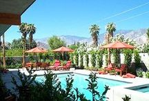 Palm Springs / Because I need a Pinterest board to remind me of everything I'm excited about... Join me! Can't wait for our annual girls getaway!