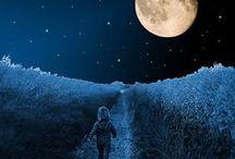 A Night Walk