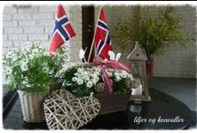 Ideas for May 17th, Norwegian national day