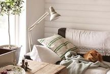 Cozy Home Decor  / Fun finds that will liven up your home.