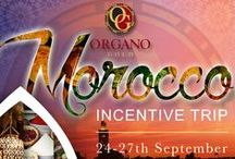 Official Events / Official conventions, recognitions, VIP red carpets and more. This is: OG LIFESTYLE convention.organogold.com