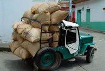 Origen & raíces de café / Recolectando con nuestras tradiciones y cultura