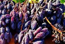 California Raisins / by California Raisins