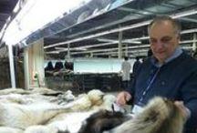 Meet The Fur Trade