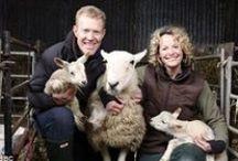 Animal Rights Activism / Animal rights activists and their activities.