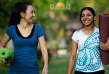 Healthy Lifestyle / Explore some interesting ideas to live a healthy life in all aspects
