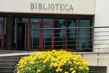 La Biblioteca de la ULL en imágenes / Imágenes de la Biblioteca de la Universidad de La Laguna. Pasea por los espacios y el entorno de nuestros puntos de servicio. Te mostramos también al personal que te ayudará en tus búsquedas de información en la Biblioteca.