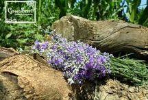GreeScarf Lavender Garden / Handmade lavender decorations