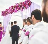Wedding Arch / Here is the photos with designed bamboo arches.