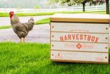 HarvestBox Meats / A Better Way to Eat - From Our Farms to Your Family.  Learn more at our website: www.harvestbox.com  #eat #food #harvestbox #grilling #grill #health #healthy #cook #cooking