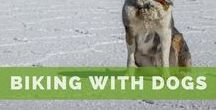 Biking with Dogs / How-to guides and other important information that will help prepare you for a bicycle tour with a dog.