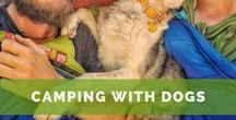 Camping with Dogs / Camping with dogs: Tips, gear, and how-to make the best of the outdoors with your pup.