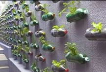 Urban Farming / Urban Farming, Gardening, Fruit, Vegetables, Flowers, Herbs, upcycling, permaculture design, green building