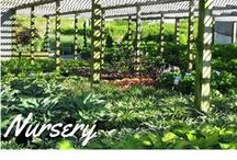 Nursery / Arrowhead has the shrubs, trees and flowers to make your landscape complete.