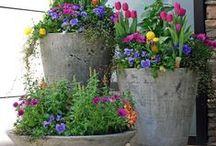 jardins e hortas