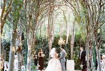 Where to Wed: The Woods / Wedding destination, woodland weddings, woodland wedding decorations, forest wedding centerpieces, gift ideas, wedding favors, cool wedding ideas