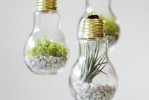 DIY Green Projects / Environmentally friendly crafts and restorations.