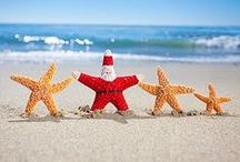 Holidays at the Beach / by The Shores Resort & Spa