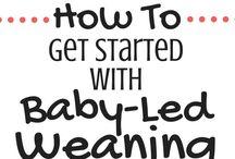 BLW | Baby Led Weaning / Du möchtest gerne Baby Led Weaning (BLW) machen? Hier findest du alles, was du dazu wissen musst und viele Rezepte für BLW. Egal, ob dein Baby 6, 7 oder 8 Monate alt ist (oder älter!) hier gibt es für jedes Alter passende Rezepte.