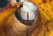 Foto Inspirationen / Inspiration für schöne Fotos. Fotos von Mamas, Babys und Kindern im Herbst